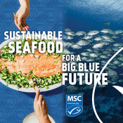 Social Media Post - Salmon, Fish - National Seafood Month Partner Resources