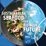Social Media Post - Shrimp, Earth - National Seafood Month Partner Resources