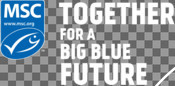 MSC print design - Together for a Big Blue Future