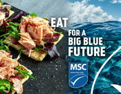 Out of home ads - Video - Seafood Month 2021