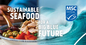 Static Digital Ad - Plated tuna and wave - National Seafood Month Partner Resources