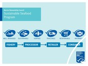 Sustainable seafood program infographic