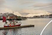 Norwegian cod fishery  in Lofoten