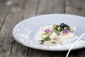 Fish seafood plaice recipe NL recept