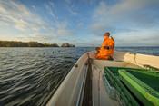 Anna Vesper Gunnarsson fishing pikeperch in Lake Hjälmaren in Sweden