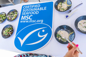 Sampling MSC certified sustainable seafood dishes