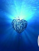Corazón CGI