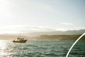 Western Asturias Octopus Fishery