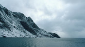 Lofoten North Norway Cod Fishery