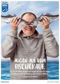 MSC 20 Jahre POS Poster Fischer