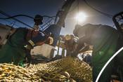 Three fishermen repairing net south african Hake fishery