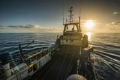 Sun on the horizon south african Hake fishery