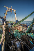 Trawling south african Hake fishery