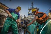 Fishermen using fishing equipment south african Hake fishery