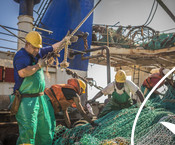 Fishermen using fishing equipment south african Hake fishery