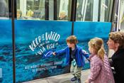 Keep it Wild - Vælg den blå fisk