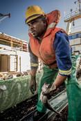 Throwing fish south african Hake fishery