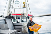 Klaas Bouma with a container of brown shrimps