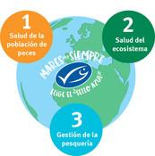 Los 3 Principios de la Pesca Sostenible Mares Para Siempre