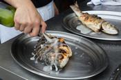 Grilled sardine plate