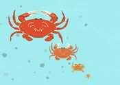 Crab illustration generations