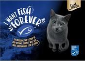 Sheba/MSC cat pet food poster