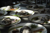 Wild American Seafood Dinner - Sea Clam entree