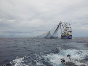 Purse seine tuna fishing boart